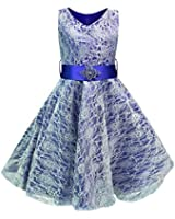 Live It Style It Girls V-Neck Lace Wedding Party Bridesmaid Princess Dance Prom Dresses