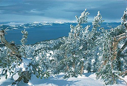 Lake Tahoe #624-Goodall Christmas Cards (Lake Tahoe Heavenly)