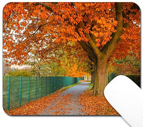 MSD Mouse Pad with Design - Non-Slip Gaming Mouse Pad - Image ID: 14783310 Red Autumn Oak Tree
