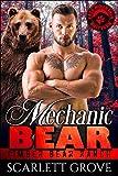 Mechanic Bear