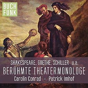 Berühmte Theater-Monologe Hörbuch