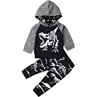 Toddler Baby Boy Hoodie Outfit Long Sleeve Dinosaur Top Sweatsuit Pants 2PCS Fall Winter Clothes Set