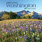 Washington Wild & Scenic 2020 7 x 7 Inch Monthly Mini Wall Calendar, USA United States of America Pacific West State Nature (English, French and Spanish Edition)