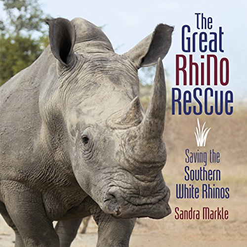The Great Rhino Rescue the Great Rhino Rescue: Saving the Southern White Rhinos Saving the Southern White Rhinos (Sandra Markle's Science Discoveries)