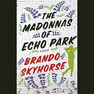 The Madonnas of Echo Park Audiobook