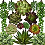 Seeko Artificial Succulents - 14 Pack - Create Realistic Succulent Arrangements, Faux Potted Succulent Decor, and Fake Succulent Planters Larger Image