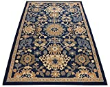 Navy Blue Area Rug 3'3″ x 4'7″ Mahal Persian Design Traditional Oriental Area Rugs Modela Collection Review