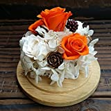 Eternal flower gift box Colorful glass imports rose flowers and flower gifts The rose will never die-M