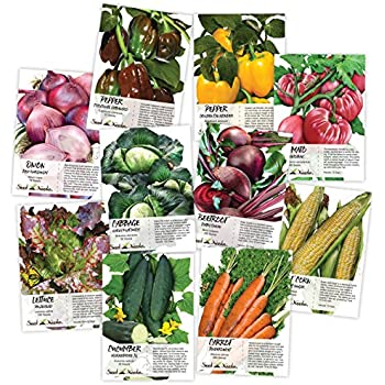 Heirloom Vegetable Seed Packet Assortment (10 Individual Seed Packets) Non-GMO Seeds by Seed Needs