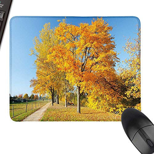 Maple Desk Country (Fall Desk Pad, Office Desk Mat Maple Trees in The Rural Countryside Natural Landscape Tranquil View with Stitched Edges 23.6