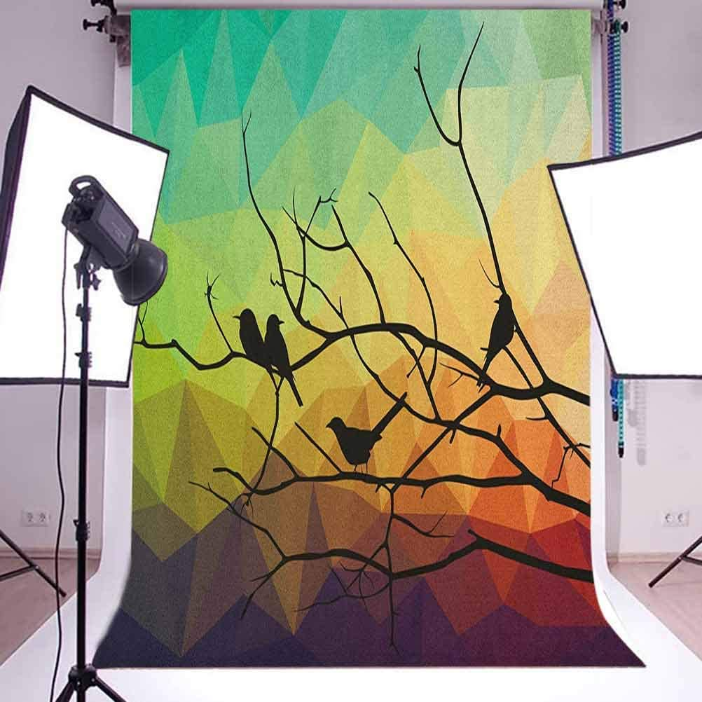 7x10 FT Modern Vinyl Photography Backdrop,Birds on Branch with Geometrical Abstract Rainbow Colored Sharp Lined Backdrop Print Background for Photo Backdrop Baby Newborn Photo Studio Props