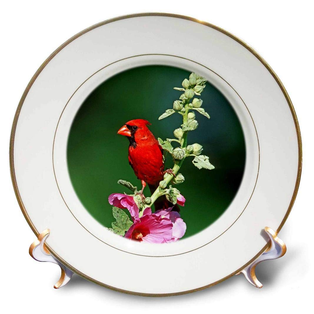 Marion County 3D Rose Northern Cardinal Male On Hollyhock Illinois Porcelain Plate 8