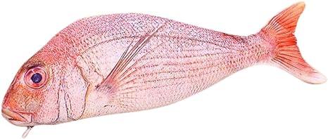 Qinlee Pencil caseRising Carp Fish-Like Zipper Pouch Weird Pen Pencil Case Makeup Case//Bag