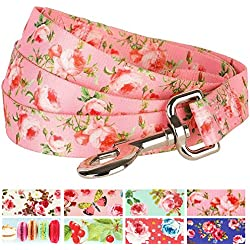 "Blueberry Pet Durable Spring Scent Inspired Floral Rose Baby Pink Dog Leash 5 ft x 5/8"", Small, Leashes for Dogs"