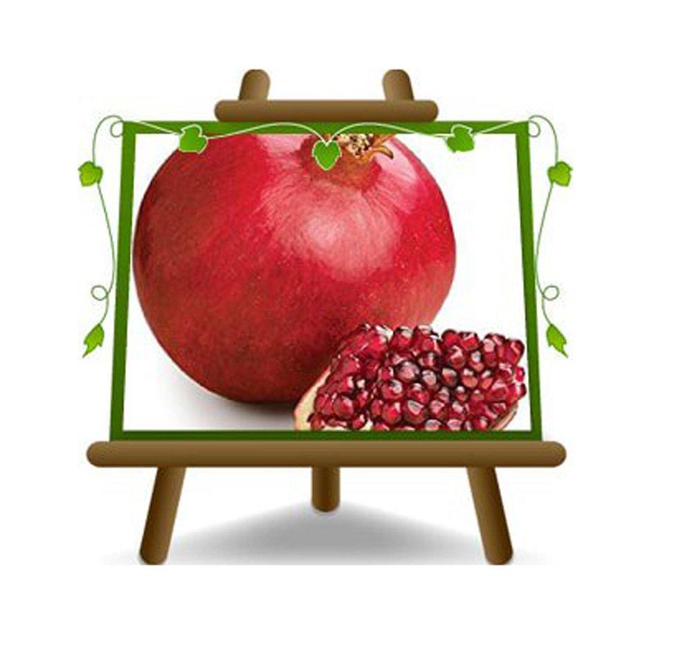 Melograno a Frutto Rosso – Soft Seed - Pianta da frutto su vaso da 20 - max 180 cm - 2 anni EuroPlants Vivai