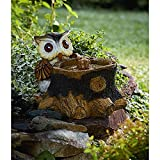 15 Inch Owl Fountain with Solar LED Lights