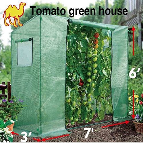 Strong Camel 7'X3'X6' New Outdoor Tomato Green House Replacement Cover (Frame Does Not Included)