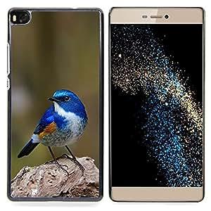 """For Huawei Ascend P8 (Not for P8 Lite) Case , Azul Songbird Blue Spring Green Nature"""" - Diseño Patrón Teléfono Caso Cubierta Case Bumper Duro Protección Case Cover Funda"""