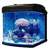 JBJ Lighting 28 Gallon Nano Cube Intermediate LED Aquarium