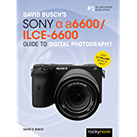 David Busch's Sony Alpha a6600/ILCE-6600 Guide to Digital Photography (The David Busch Camera Guide Series) book cover