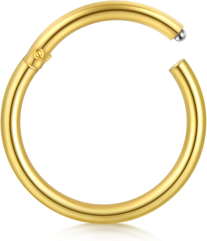 Briana Williams 18 Gauge Segment Nose Ring Hoop Stainless Steel