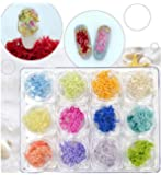 XICHEN 12 Colors/Piece 3D Nail Art Natural Coral Tree Dried Flower Manicure Tips Decoration Stickers