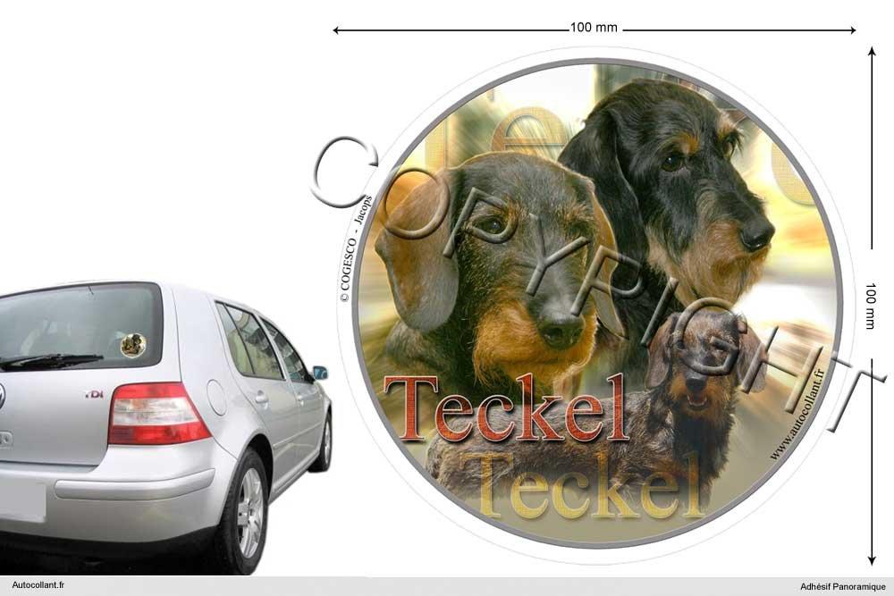 Autocollant chien circulaire 20 Cm Teckel-Poil-Dur COGESCO sarl