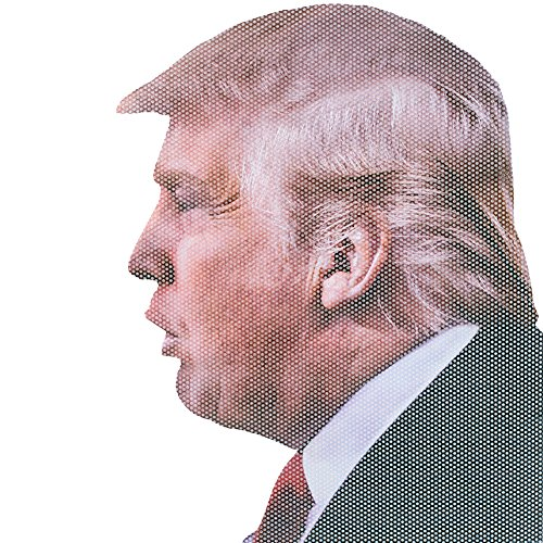 - Ride With Donald Trump Car Window Decal - Easy Removal Leaves No Residue