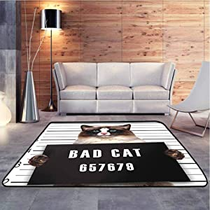 Nursery Area Rug Bad Gang Cat in Jail Kitty Under Arrest Criminal Prisoner Hangover Artsy Super Soft Faux Area Rugs for Home, Bed, Living Room, 4 x 4 Feet