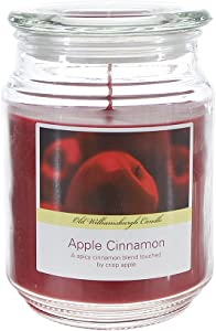 SRG Scented 18 Ounce Glass Jar Container Candle - Apple Cinnamon