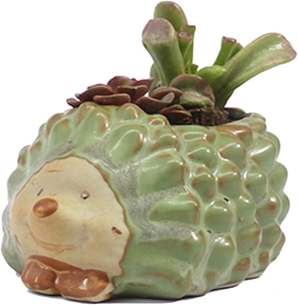 SUNSMIL Plants Succulent Pots, Cute Ceramics Planter with Drainage, Garden Flower Pot for Decor Home, Office, Desk, Living Room (Hedgehog)