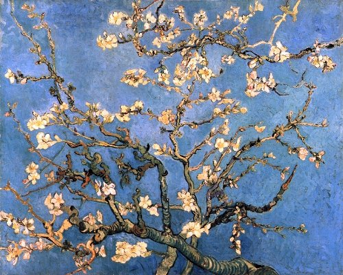 (Vincent Van Gogh A Branch with Almond Blossom - 20.05
