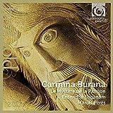 Carmina Burana: Le Myst?re de la Passion by Marcel Peres (2013-08-03)