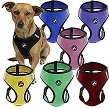 Oxgord Durable Mesh Medium Pet Harness - Blue