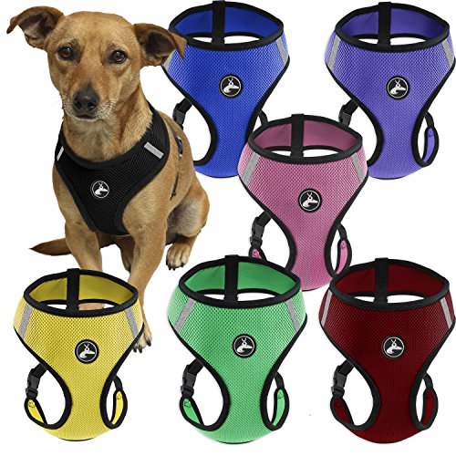 OxGord Pet Control Harness for Dog & Cat Easy Soft Walking Collar, Small, Purple