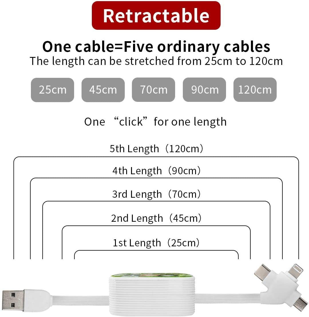 Mini Square 2x2x0.8 Micro USB Cable Traditional Ethnic Ornamental Retro 3-in-1 Retractable USB Cable Type C Sync Fast Charging Cord for All Phone Tablets