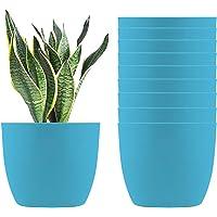 Mohena - Macetas de plástico con autorriego, 15,24 cm, para todas las plantas de casa, flores, hierbas, violetas…