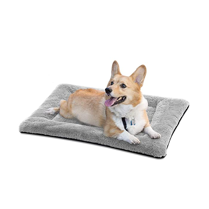 The Best Food Dog Bed