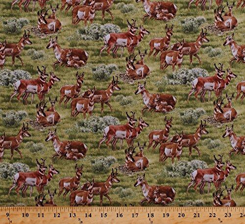 Cotton Pronghorns Antelope Deer Gazelle Animals Grasslands Meadows Fields Scenic North American Wildlife Cotton Fabric Print by the Yard (504GREEN) (Wildlife Print Fabric)