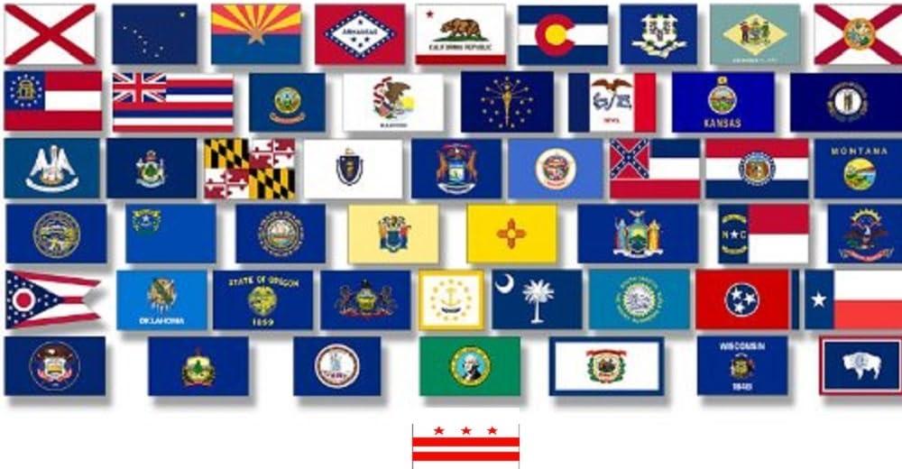 OREGON U.S STATE 3 metre BUNTING 10 FLAGS flag USA AMERICA AMERICAN