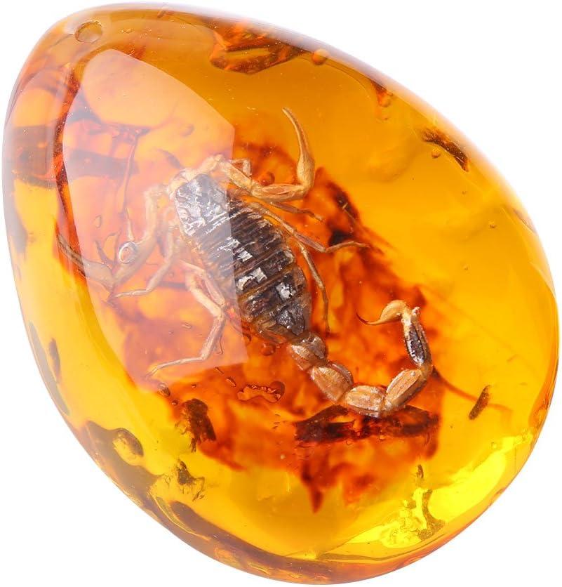 Bolange Arte Piedra Ámbar Insectos Especímenes Adornos Artesanías, Hermosa Resina Artesanía Colección De Ámbar Decoración del Hogar (Escorpión)