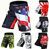 Men's Mixed Martial Art Shorts by VERUS (Red/Navy, Small)