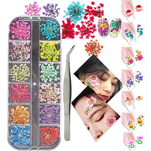 3D Nail Art Decoration Kits 24pcs 12 Colors Nail Dried Flowers 8 Sheet Floral Nail Art Stickers Decals Curved Tweezers, Polish Pressed Dry Flowers Water Decal Manicure Design Tools Set (Luck011B)