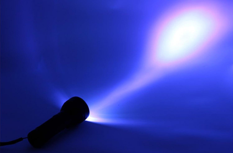 LemonBest Bright 395 nm 51 UV LED Flashlight Black Light 3AA Battery Camping Ultra Violet Outdoor Light Torch Lamp