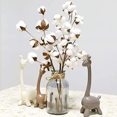 Wallpaper 2Pcs 21 inch Naturally Dried Cotton Stems Farmhouse Style Artificial Flower Fill,Home Decoration for Bedroom Living Room Kitchen: Home & Kitchen