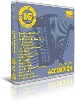 Acordeón/Accordion - Pendrive USB OTG: Amazon.es: Electrónica