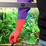 """2 Aquarium Water Change Gloves by SunGrow (20"""") - Keep hands & arms dry, allergen- and contamination-free during Fish tank maintenance: Elastic forearm seal and prevent leaks: Heavy-duty construction"""