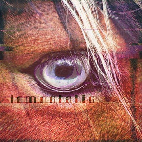 Lomostatic - Lomostatic - FR - CD - FLAC - 2017 - HOUND Download