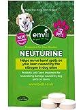 Envii Neuturine – Dog Urine Grass Neutralizer Tablets Repairs Burnt Grass Affected by Dog Urine – 12 Tablets