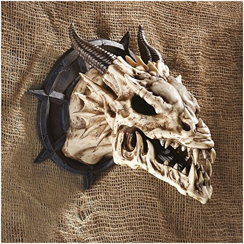 Dungeon Chained Skeletal Dragon Protruding Skull Wall